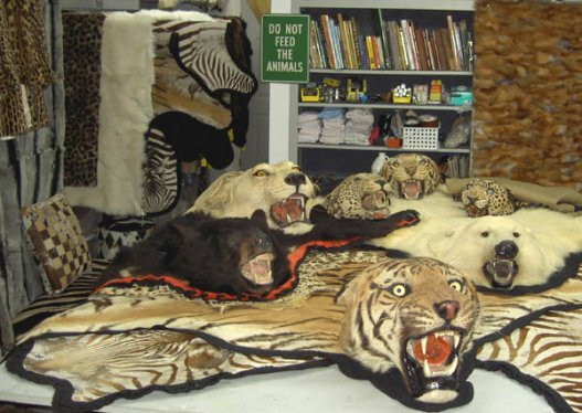 Animal Rug With Head Home Decor
